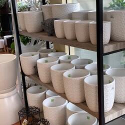 Pots - white